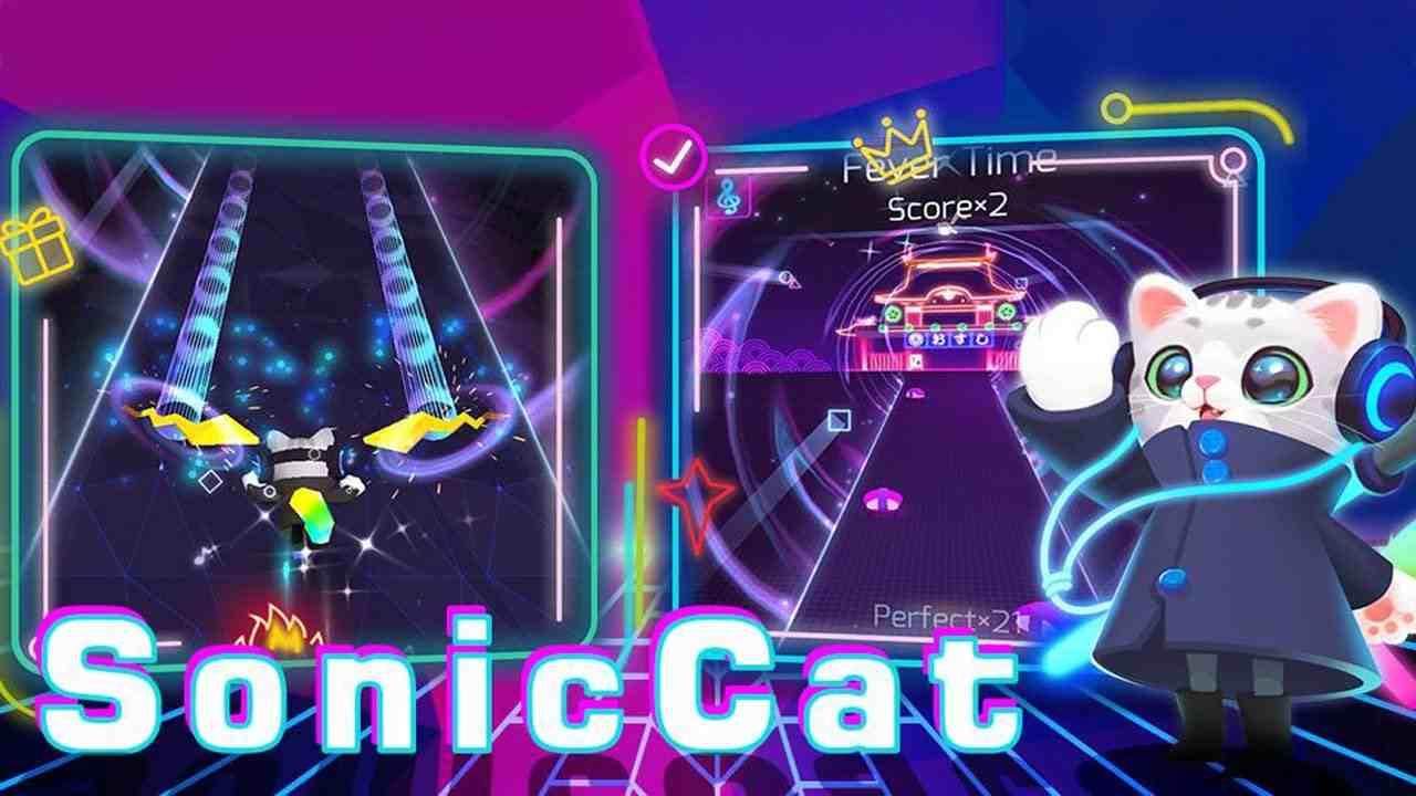 game Sonic Cat mod hack
